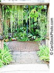 Walk way entrance to fern garden