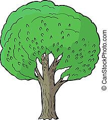 poplar - Hand drawn, vector, cartoon illustration of poplar