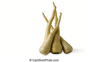 Parsnip - Group of Parsnip isolated on a white background.