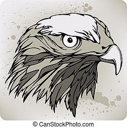 Buzzard hawk, hand drawing Vector illustration