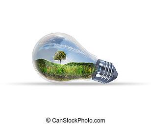 ライト, 緑, 電球