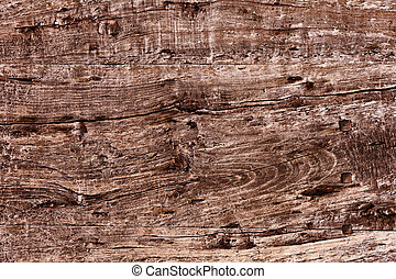 old wooden plank - old plank of knotty wood with woodworm...