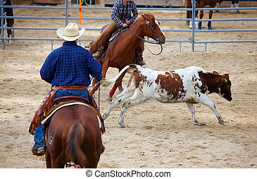 rodeo competition is about to begin - rodeo competition