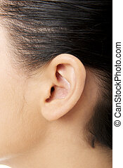 Human ear closeup  - Young woman ear closeup