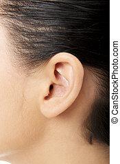 humano, oreja, Primer plano