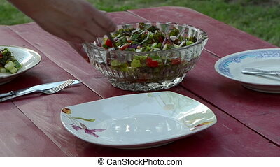 hand salad pus dish - hand put tomatoes cucumber red onion...