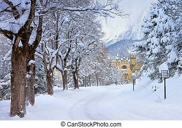 Seefeld castle in winter 01