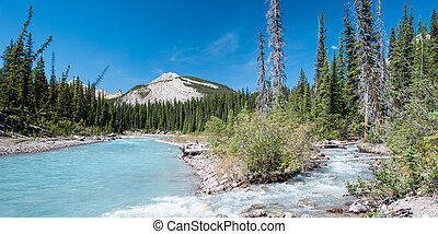 River on the icefield parkway in Jasper National Park