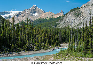 River on the icefield parkway in Jasper National Park,...