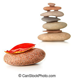 Zen stone with red dry leaf