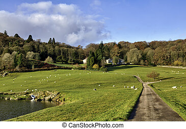 House amidst trees in the Winster Valley, Cumbria - Lane...