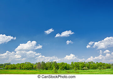 Summer landscape with clouds on the blue sky
