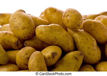 Fingerling Potatoes - Close-up of several fingerling...
