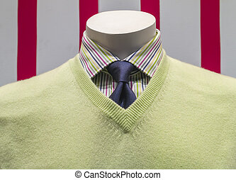 Green Sweater, Striped Shirt and Blue Tie front view -...