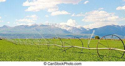 Irrigation System on Farm with San Juan Mountains in Background