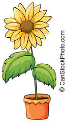 A flower plant in a pot - Illustration of a flower plant in...