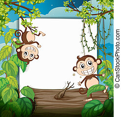 Monkeys and white board - Illustration of monkeys and white...