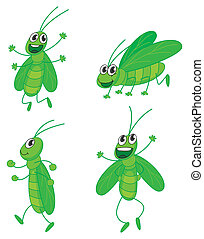 A four grasshoppers - Illustration of a four grasshoppers on...