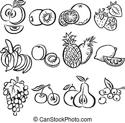 Stylized fruit vector set on a white background