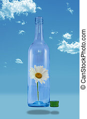 Release your inner beauty - White daisy in floating bottle...