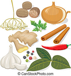 Spices and vegetables for cooking