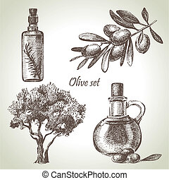 mano, disegnato, oliva, set
