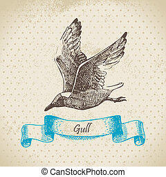 Gull. Hand drawn illustration