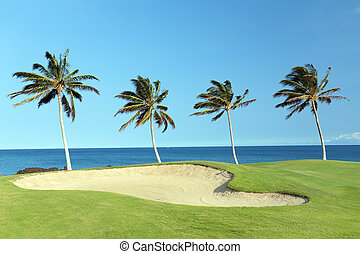 Hawaii Golf Course - Green Hawaiian Golf Course on Lava...