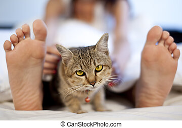 cat in bed with woman feet