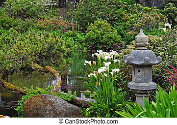 Lush green asian garden and pond in spring