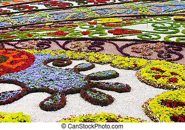 Flowerbed - Background from beautiful blossoming flowers