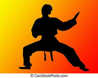 man - kung fu