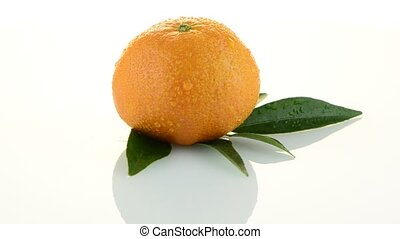 Tangerine rotating on white background