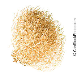 Tumbleweed - Dry Bush of Desert Tumble Weed on White...