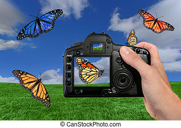 Photographer Shooting Butterflies in the Air - Different...