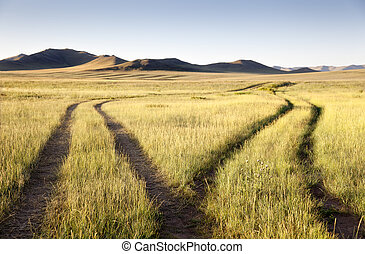 Two roads meet and separate in the Gobi Desert. Mongolia