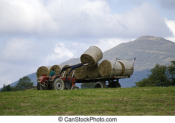Mountain haymaking - Picture of modern haymaking in the...