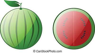 water melon isolated - water melon vector illustration...