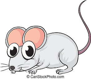 A mouse - Illustration of a mouse on a white background