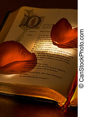 Valentines book - Two red rose petals lying on the famous...