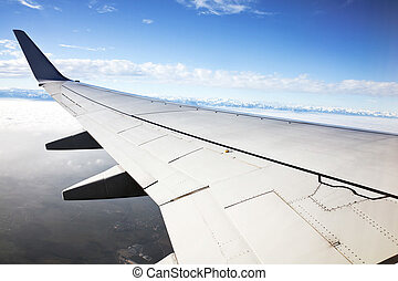 wing of an aircraft