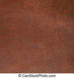 Brown leather - Closeuo of detailed brown leather texture...
