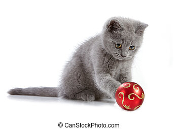 kitten and christmas baubles