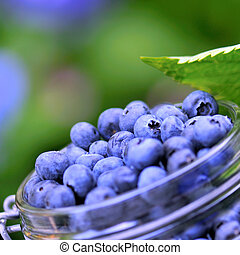 Blue berries - blue berries in glass bowl outdoor