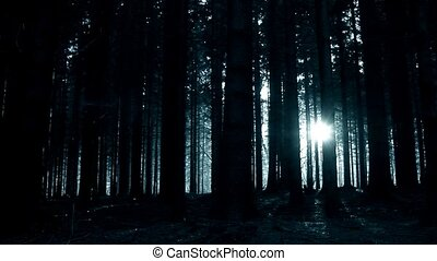 Womans ghost walking through the forest