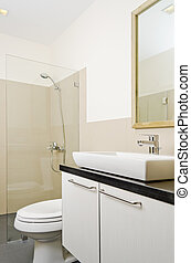 Brand New Bathroom - Lavatory sink and toilet bowl of a...