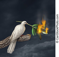 Peace Crisis - Peace crisis concept with a white dove...