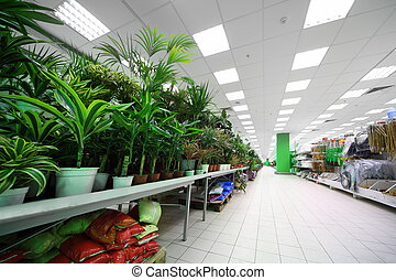 Shelves on the side with variety of pottery plants inside large supermarket