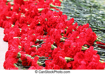 Many red flowers at memorial to tomb of Unknown Soldier in...