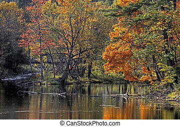 Fall forest and river landscape 94 - Forest river in the...